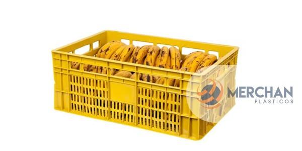 Caixa Agrícola 60 x 40 x 24