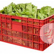 Caixa Agrícola 60 x 40 x 31