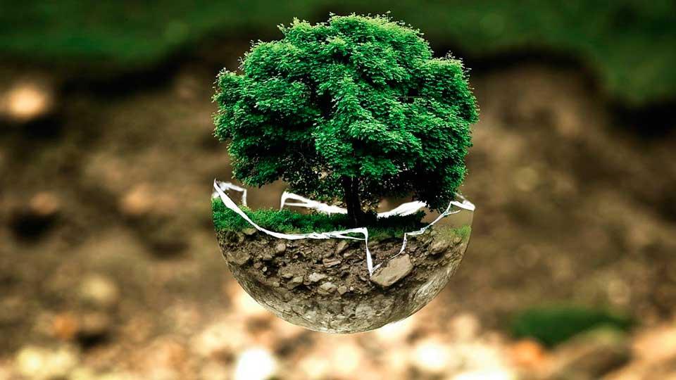 A importância em escolher produtos ecologicamente corretos