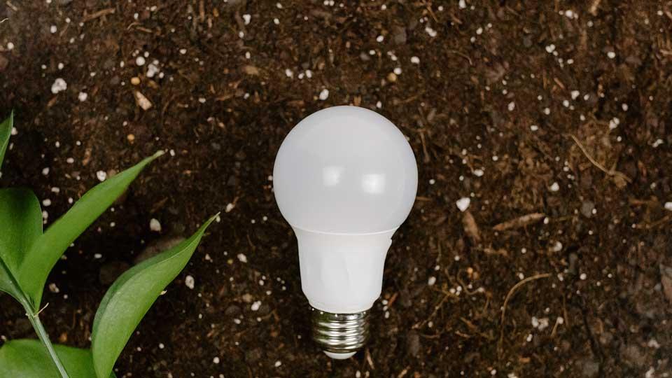O que são empresas sustentáveis e porque é relevante fazer parte delas